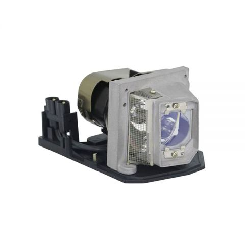 Acer Replacement Projector Lamp/Bulbs EC.J5600.001